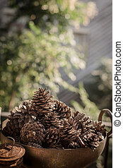 Pine Cone in basket on old wood background.