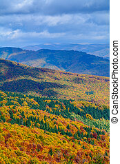 Autumn background in woods. Horizontal view of a forest, top-side of a mountain in a sunny autumn day, on the background of a cloudy sky.