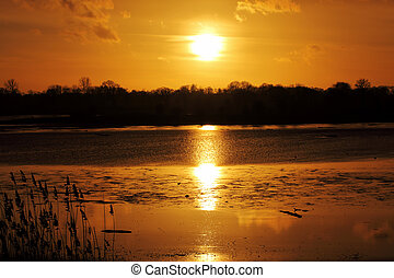 Sunset - A beautiful sunset on the lake with reed in...