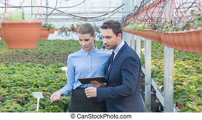 Businesspeople are checking the growing plants. - Check with...