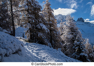 autumn and winter in the French alps -...