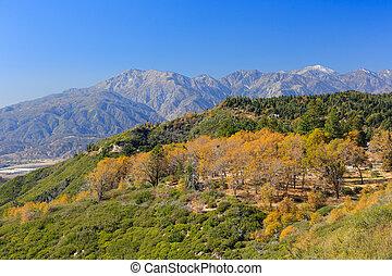 San bernardino mountains, autumn time