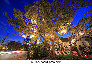 Special Chandelier Tree at Los Angeles