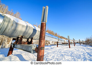 Big pipe at alaska, fairbanks, sunny day