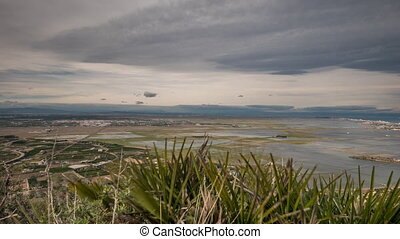 Beautiful rice fields in Albufera, Spain - Top view of rice...