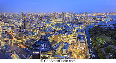 Shiodome downtown aerial view at night