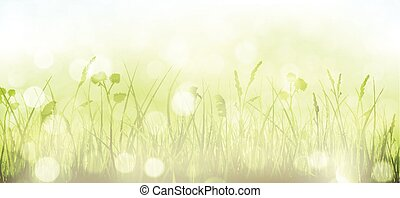 Green spring bokeh background with grass, sky and blurry light dots