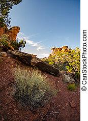 Sagebrush in Chesler Park - Sagebrush in the desert of...