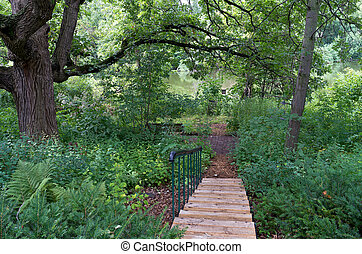 Burr Oak Backyard and Stairs - backyard landscape with...