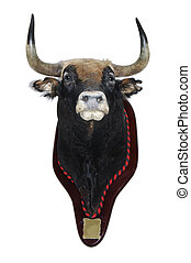 stuffed, bull\'s, head