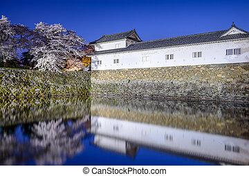 Hikone, castillo, foso,