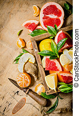 Citrus in the box - grapefruit, orange, tangerine, lemon,...