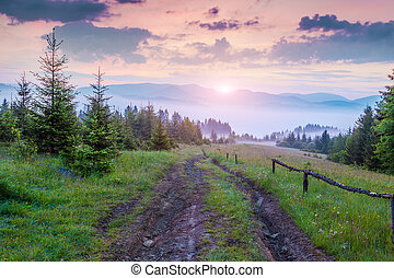 Natural summer scene in Carpathian mountains Old dirty road...