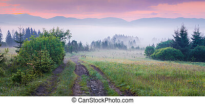 Natural summer scene in Carpathian mountains. Old dirty road...