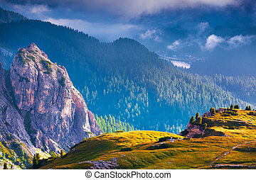 Dramatic summer scene in the National Park Tre Cime De...
