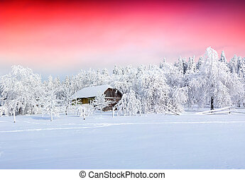 Colorful sunrise after heavy snowfall - Winter fairytale,...