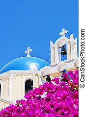 Fira church pink flowers - An image of one of the churches...