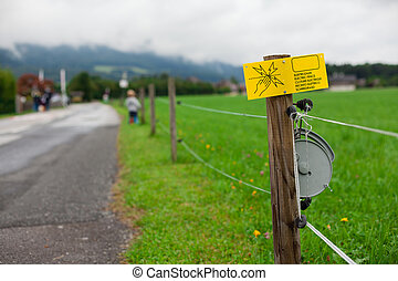 Electric fence sign - Danger - Electric fence sign (Shallow...