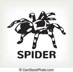 Spider vector black icon logo illustration