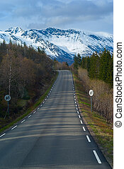 Grey asphalt road in Norvegian green mountains