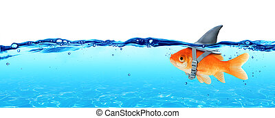 Small Fish With Ambitions Of A Big Shark - Business Concept