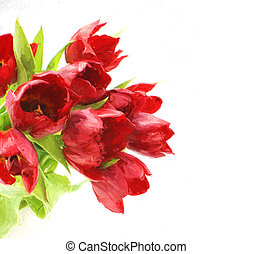 Oil painting of tulips - Oil painted image of red tulips