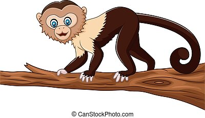 Cute squirrel monkey isolated - Vector illustration of Cute...