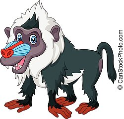 Cute baboon isolated - Vector illustration of Cute baboon...