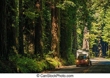 California Camper Journey. Small SUV with Compact Travel...