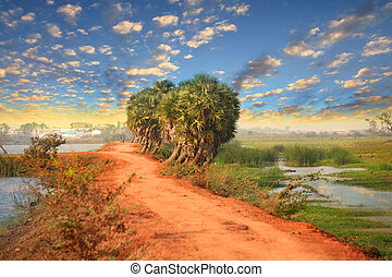 India rural landscape - Rural landscape in Andhra Pradesh,...