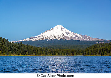 Beautiful Mt Hood and Trillium Lake in Oregon