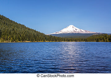 Mt Hood and Trillium Lake - View of Mt Hood, pine trees, and...