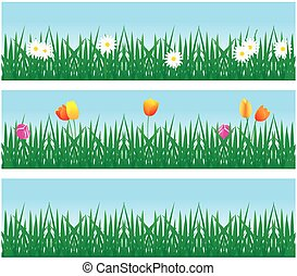 background grass and flowers