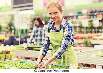 happy woman taking care of seedling in greenhouse - people,...