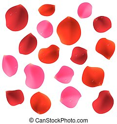 Red Rose Petals - Red and pink rose petals covered by...