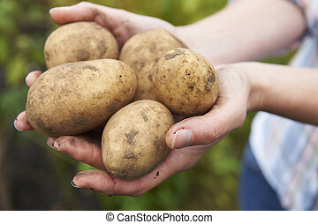 Woman Holding Home Grown Potatoes