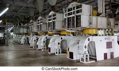Workshop processing of sunflower seeds. Production of...