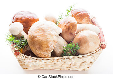 Ceps in the basket prepared for cooking isolated