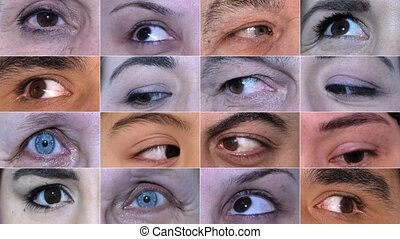 Different Colors of Eyes Macro