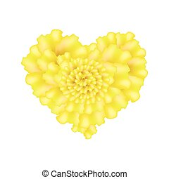 Yellow French Marigold Flowers in A Heart Shape - Love...