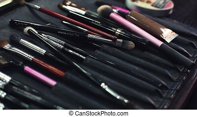 Make-up brushes in dark case - Professional Makeup Brushes...