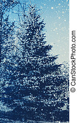 Pine tree and snow fall, abstract seasonal backgrounds