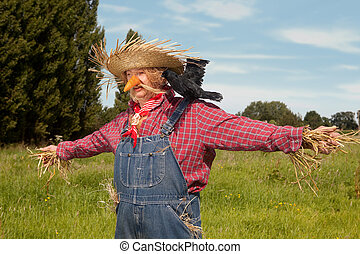 Living scarecrow - Farmer acting as a living scarecrow on...