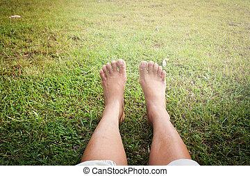 relax on green grass