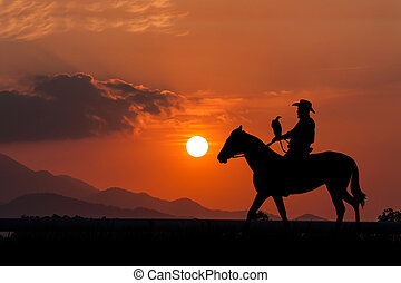 Häst, hans, silhuett,  Cowboy, sittande, solnedgång, bakgrund