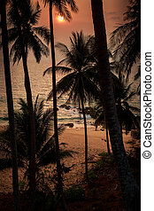 sun disk over sea and beach through silhouette of palms -...