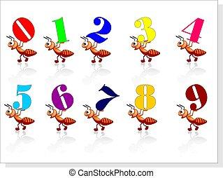 Número, formigas