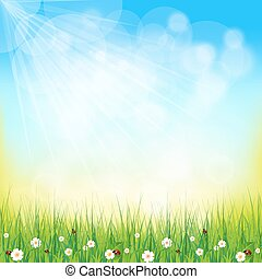 Green, sunny natural background - Green Background With...