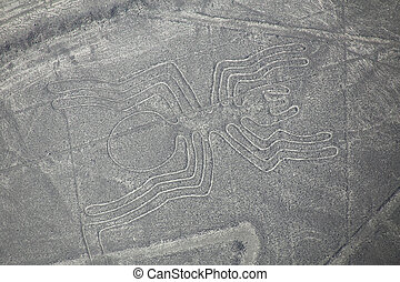 Aerial view of Nazca Lines - Spider geoglyph, Peru The Lines...