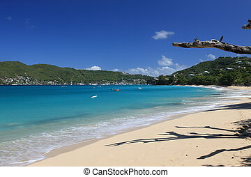 Tropical beach on Bequia Island, St. Vincent in the...